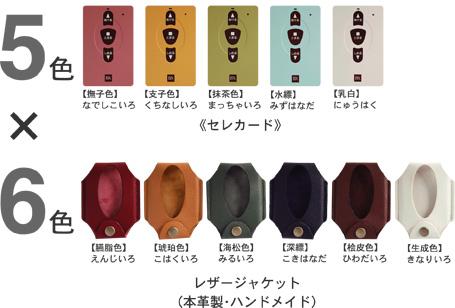 セレカード【5色×6色】